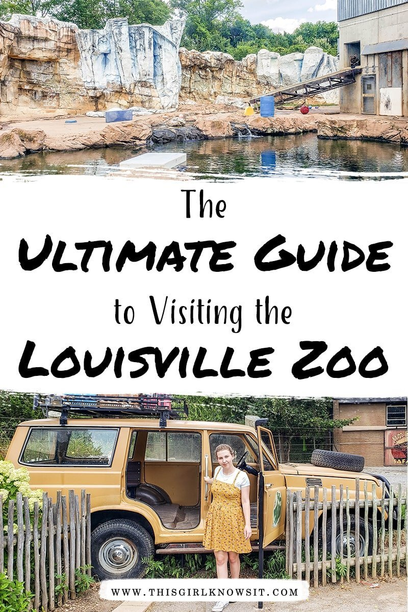Visiting the Louisville Zoo soon? Check out this post on everything there is to do and see while at the Louisville Zoo, along with how to find discounts on tickets! #louisville #kentucky #louisvillezoo #zoo #travelusa